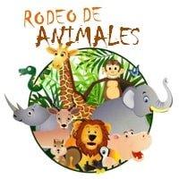 Dinámica Rodeo de Animales