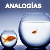 Dinámica Analogías