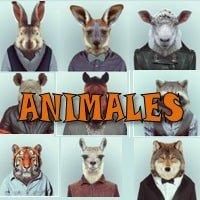 Dinámica Animales
